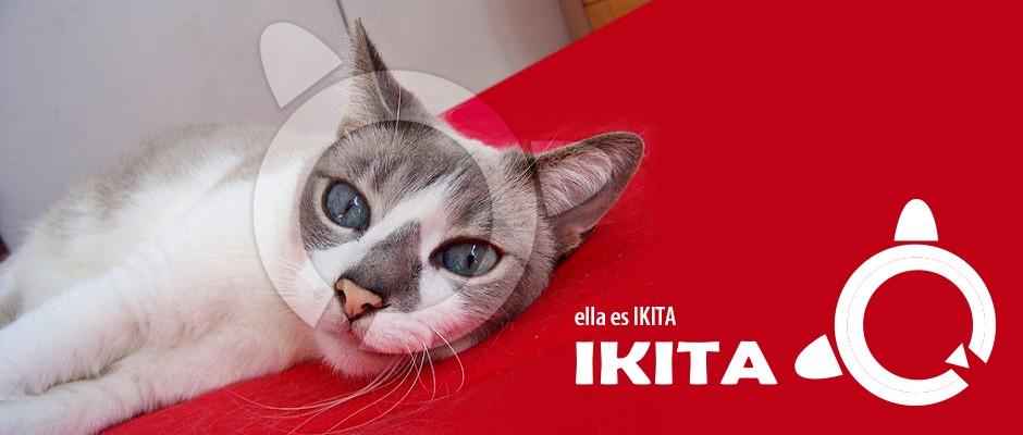 Nuestro logo: IKITA